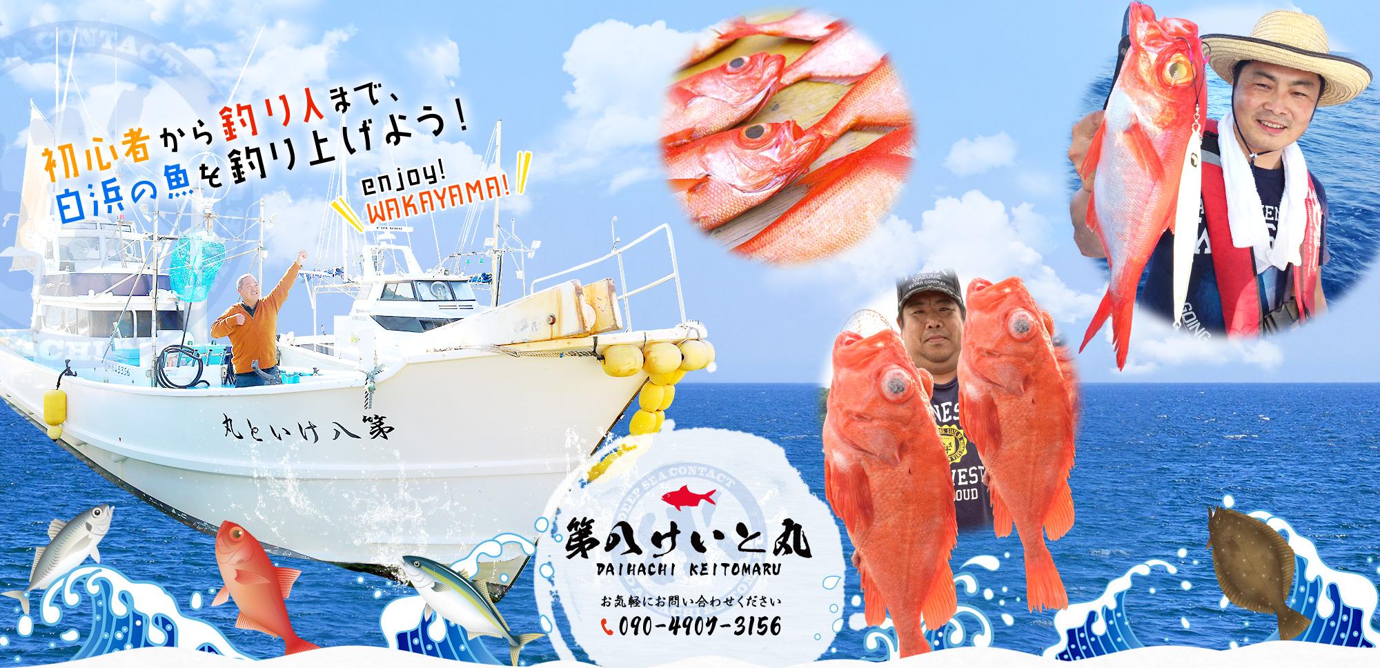 初心者から釣り人まで、白浜の魚を釣り上げよう!